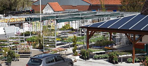 Baustoffmarkt Gifhorn, Zierpflanzen und Gartenbedarf